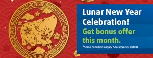 Lunar New Year Promotion